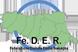 logo Fe.D.E.R. Federazione Diabete Emilia Romagna